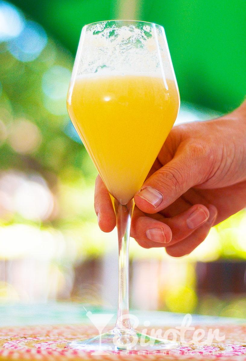 Cocktail bellini recette pr paration et avis for Cocktail preparation
