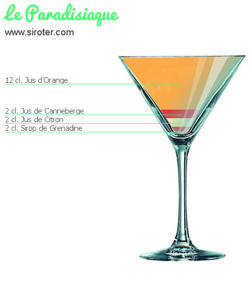 Cocktail LE PARADISIAQUE